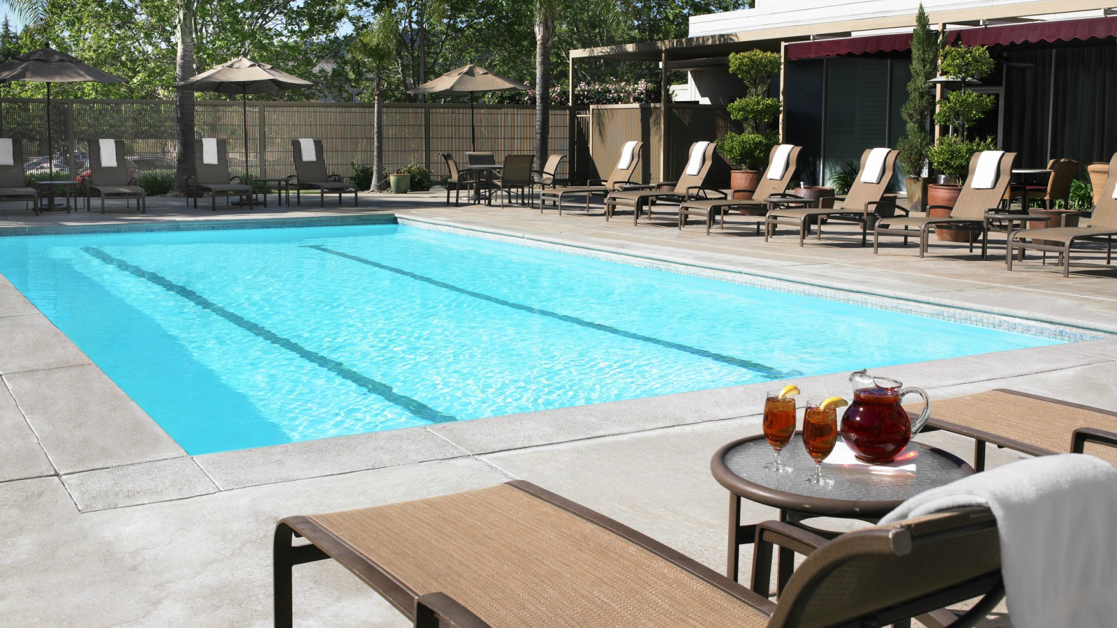 Pool - Sheraton Pleasanton Hotel